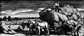 wood-engraving original print: Hay Making for Farmer's Glory